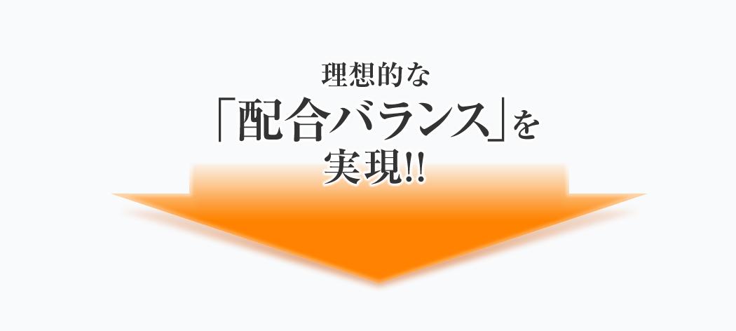 理想的な配合バランス」を実現!!