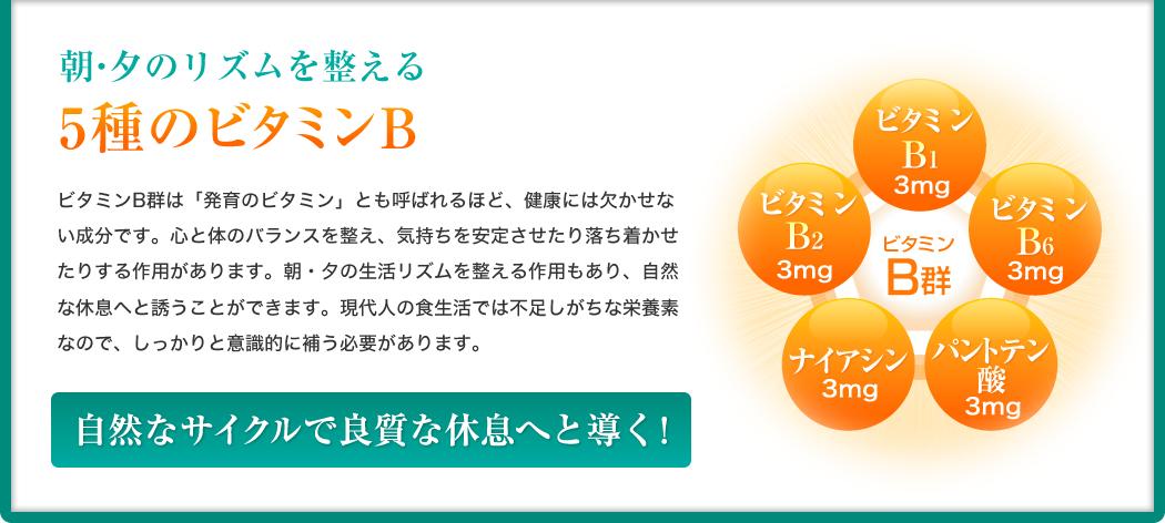 朝・夕のリズムを整える5種のビタミンB